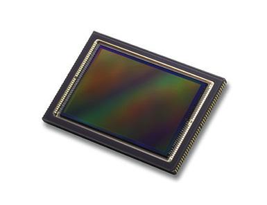 Canon Full-Frame Sensor
